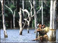 Tala de árboles en la región amazónica
