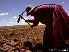 A farmer tills a field in Bolivia (file image)