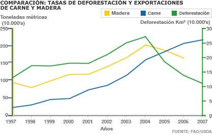 Deforestación y exportación de carne y madera.