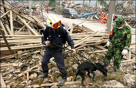 Singapore rescuer combs wreckage with sniffer dog 18/5/08