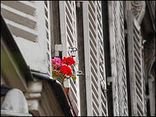 Flowers on a window ledge (Image: BBC)
