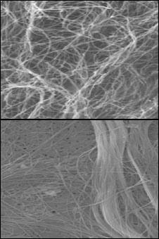 Asbestos (x4,000), Carbon Nanotubes (x6,000). Copyright: Nature Nanotechnology