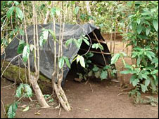 Replica of a guerrilla camp in the grounds of the museum