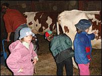 Воспитанники детдома и коровы