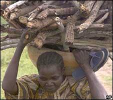 A Nigerian woman carrying firewood