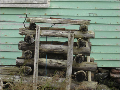 Pile of wood outside a brightly painted wooden building