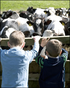 Children on a farm open day