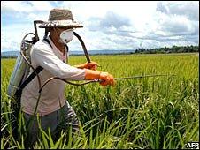 Farmer spraying field. Image: AFP/Getty