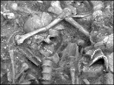 Talheim burial pit