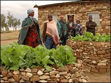 Family tend their keyhole garden in Lesotho's central highlands