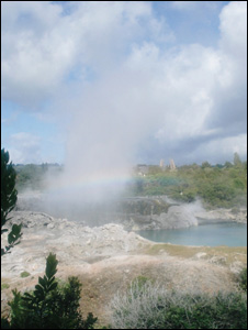 A geyser on New Zealand's North Island (Image: BBC)