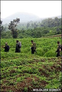 Rangers on patrol (Image: Wildlife Direct)