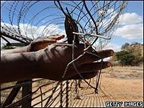 Un traficante de personas corta una valla fronteriza para ingresar a ciudadanos de Zimbabwe  a Suráfrica, Getty Images