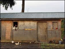 Mike India's hut in North Kivu