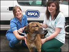 Brambles and RSPCA staff (RSPCA/PA Wire)