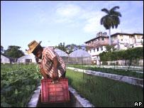 Trabajador cubano