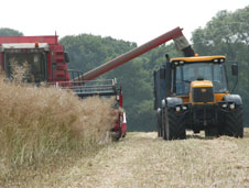 A combine harvester and tractor harvesting a field