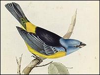 Página del Origen de las Especies de Charles Darwin