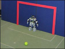 Robot goalkeeper