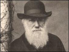 Charles Darwin in 1881 (Darwin, F. and Seward, A. C. eds. 1903 - Cam Uni)
