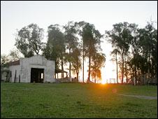 Uruguayan farmland