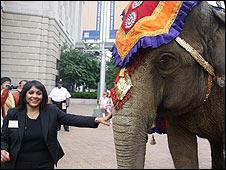 Elephant in New York