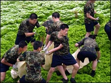 Young soldiers remove the algae in Qingdao