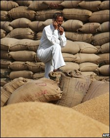 Indian grain farmer