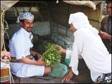 Khat is sold openly on the streets in places like The Yemen