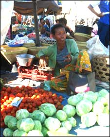 Fruit and vegetable market in Lombok