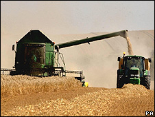 Harvest near Cambridge, UK
