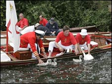 Swan Upping taking place in 2007