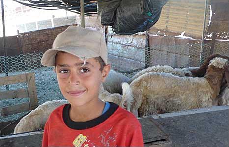 Villager in al-Hadidiya