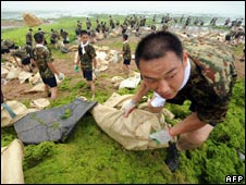 Soldiers remove algae from a beach in Qingdao on 5 July 2008