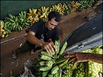 Trabajadores descargan bananas en La Habana