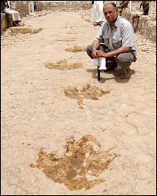 Dr Mohammed al-Wosabi next to some prints from ornithopods (bipedal dinosaurs)