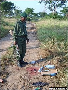Scene of the ambush (Image: WildlifeDirect)
