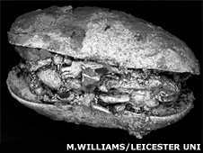Fossil ostracod from the Dry Valleys (Mark Williams, University of Leicester)