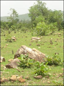 Fossils lying scattered around Tara village in eastern India