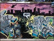 DMP Graffiti (generic) (Picture: skinnycap.com)