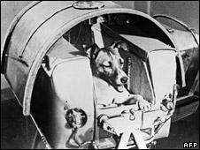 Laika the dog (Nasa)