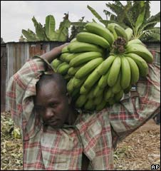Kenyan banana seller. File pic.