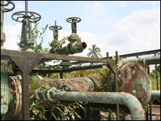 Overgrown pipes at a Shell flow station
