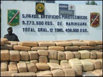 12 tonne haul of marijuana seized by the authorities
