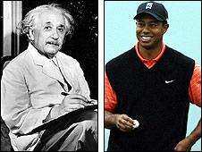 Woods, Einstein montage
