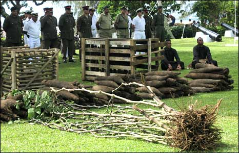 A royal offering of yams and kava (pic David Marks)