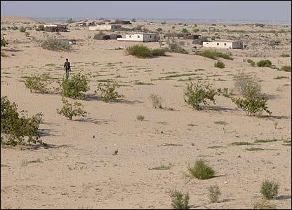 Casas en el desierto del Sina�