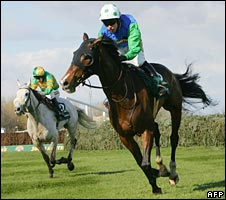 2008 Grand National
