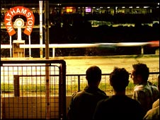 Punters at Walthamstow dog track. Photo Clark Ainsworth