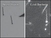 Comparison of shapes between nanos and bacteria